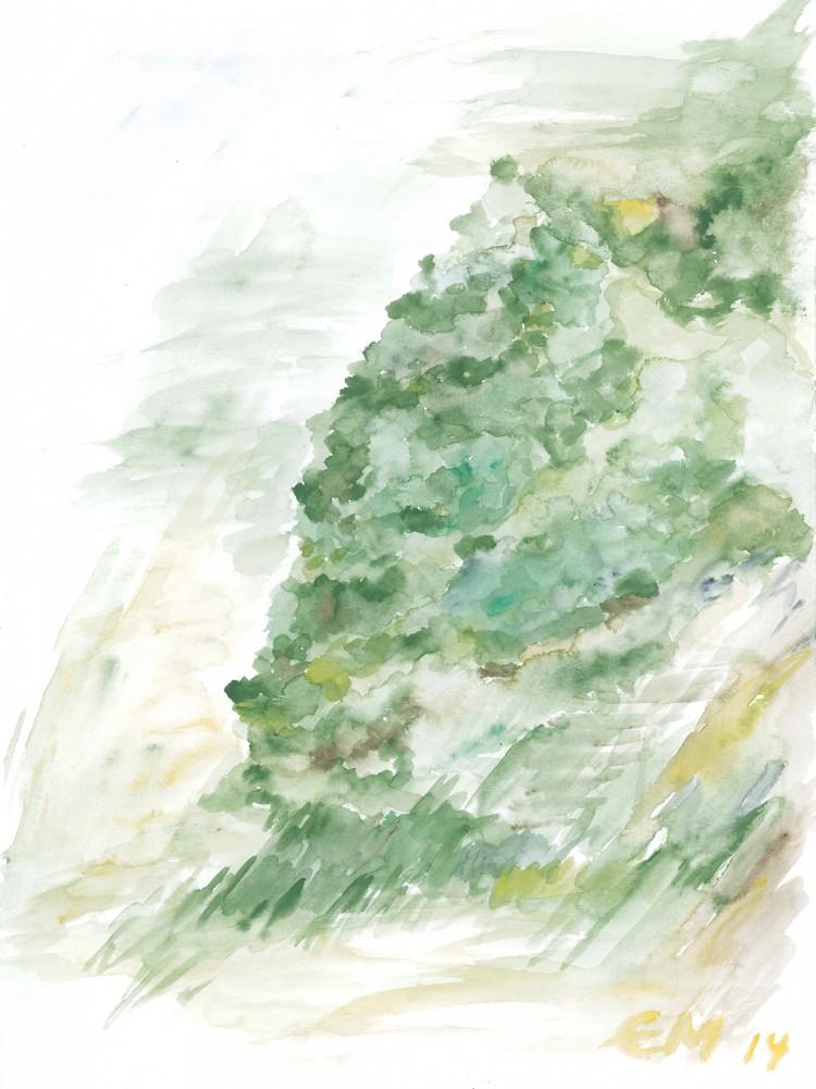 007_Baum-im-Wachsen-21.05.14