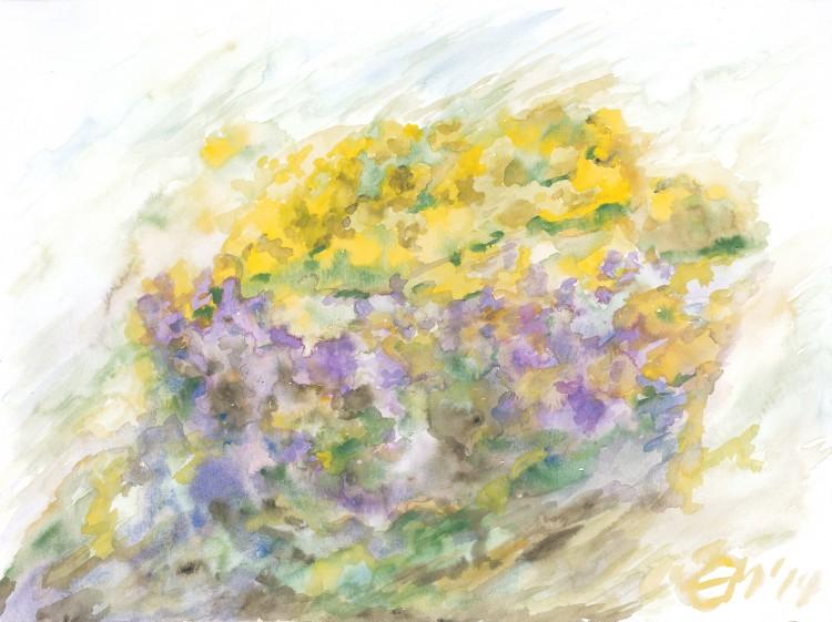008_Blumenfarbenspiel 0614